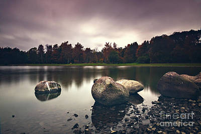Photograph - Tranquil Forest Lake by Sophie McAulay