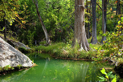 Hamilton Pool Photograph - Tranquil Green Pool by Mark Weaver