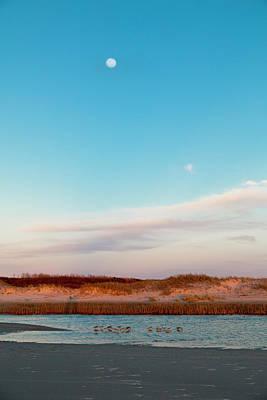 Sandpiper Photograph - Tranquil Heaven by Betsy Knapp