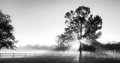 Photograph - Tranquil Morning Fog by Dale Powell