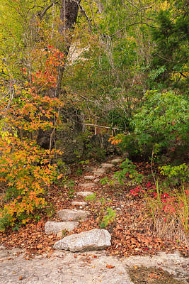 Lost Maples Tranquil Passage Art Print by Mike Brymer