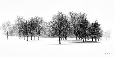 Photograph - Tranquil Snowfall by Adam Olsen