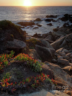 Photograph - Tranquil Sunset  #20142-20147 by John Bald