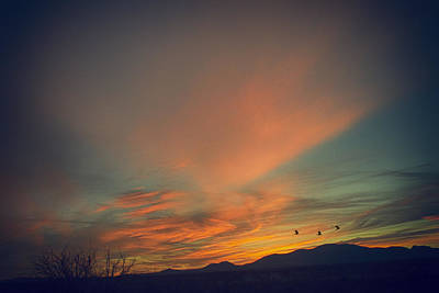 Photograph - Tranquil Sunset by Barbara Manis