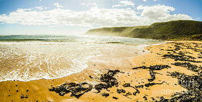 Trial Photograph - Tranquil Tasmanian Beach Paradise by Jorgo Photography - Wall Art Gallery