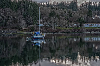 Photograph - Tranquility 9 by Timothy Latta