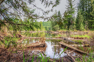 Photograph - Tranquility At The Lake by Spencer McDonald