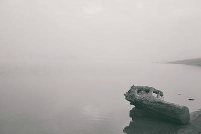 Photograph - Tranquility By The River by Kunal Mehra