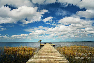 Photograph - Tranquility Found by Kelly Nowak