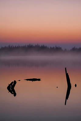 Photograph - Tranquility  by Garett Gabriel