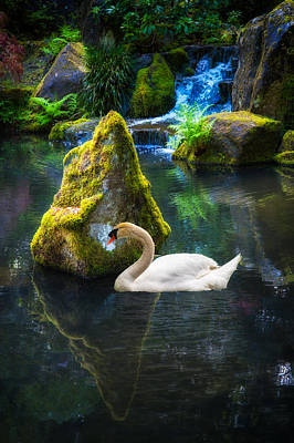 Photograph - Tranquility by Harry Spitz