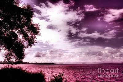 Photograph - Tranquility by Heather King
