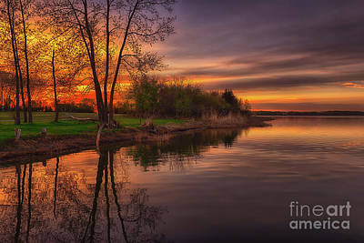D800 Photograph - Tranquility by Ian McGregor