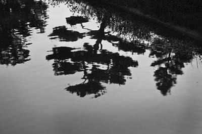 Photograph - Tranquility II by John Hansen