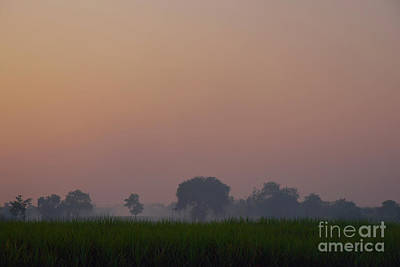 Photograph - Tranquility Of Dusk by Kiran Joshi