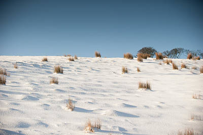 Photograph - Tranquility Of Freshly Fallen Snow by Helen Northcott