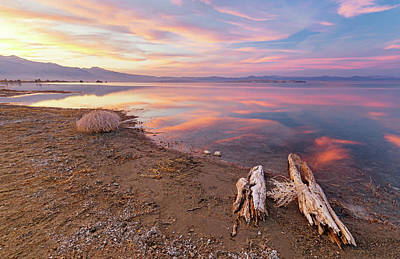 Photograph - Tranquility by Tassanee Angiolillo