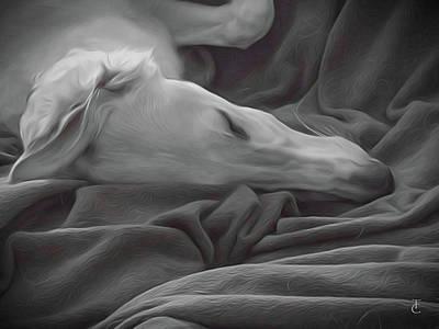 Tranquility Art Print by Tamara Carey