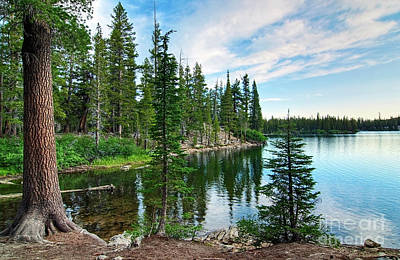 Pine Trees Photograph - Tranquility - Twin Lakes In Mammoth Lakes California by Jamie Pham