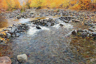 Photograph - Tranquille Creek # 2 by Ed Hall