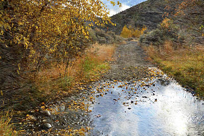 Photograph - Tranquille Creek Trail by Ed Hall