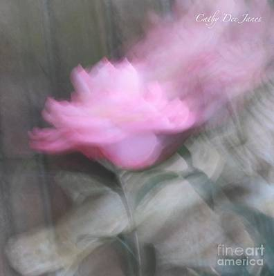 Photograph - Transcend by Cathy Dee Janes