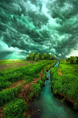 Wind Photograph - Transformation by Phil Koch