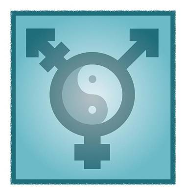 Bisexual Photograph - Transgender Balance, Conceptual Artwork by Stephen Wood