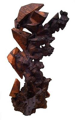 Sculpture - Transition  by Daryl Stokes
