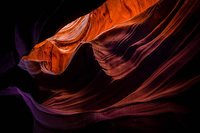 Photograph - Transitions Of Antelope by Mark Robert Rogers