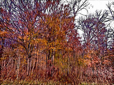 Photograph - Transitions - Painterly by Leslie Montgomery