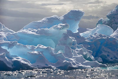 Refection Photograph - Translucent Iceberg by Ira Meyer