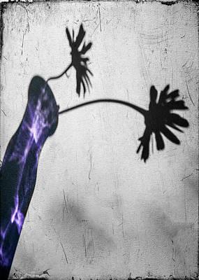 Photograph - Translucent Purple by Cathy Kovarik