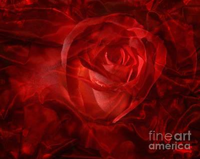Digital Art - Translucent Rose by Serena Ballard