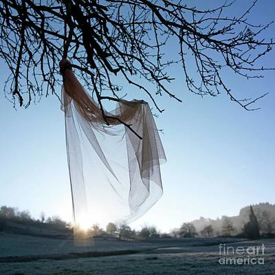 Snow Covered Fields Photograph - Transparent Fabric by Bernard Jaubert