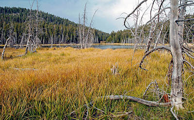 Photograph - Trap Lake Co by James Steele