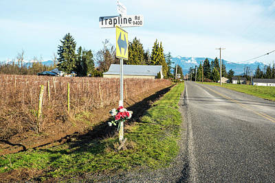 Photograph - Trapline Roadside Memorial by Tom Cochran