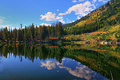 Photograph - Trapper Lake Reflections by Greg Norrell