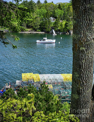 Photograph - Traps Stacked In Lobster Cove, Boothbay Harbor, Maine  -70456 by John Bald