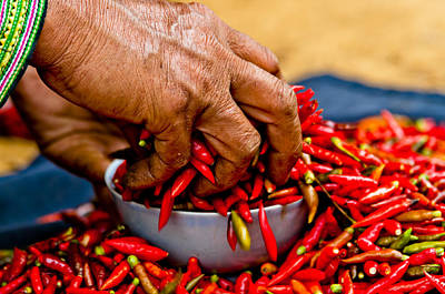 Photograph - Woman Holding Red Chillies, Can Cau Market, Sapa,vietnam by Neil Alexander