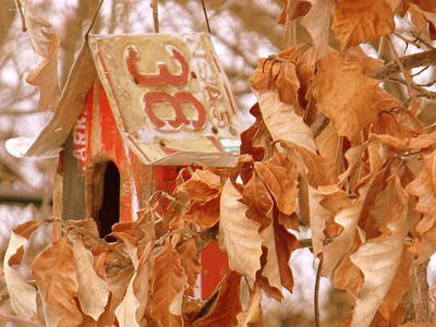 Indiana Winters Digital Art - Traveling Bird House by Ed Smith