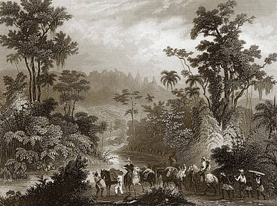 Landscape Drawing - Travels In Brazil by English School