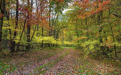 Travels Through Autumn Art Print