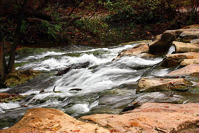 Photograph - Travertine Creek In Fall by Sheila Brown