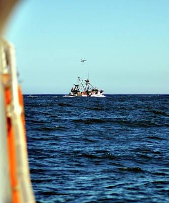 Photograph - Trawler Following by Jerry Sodorff