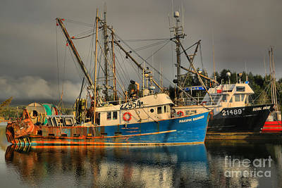 Photograph - Trawlers On Vancouver Island by Adam Jewell