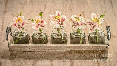 Photograph - Tray Of Flowers by Edward Fielding