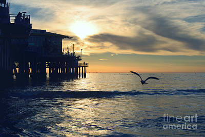 Photograph - Seagull Pier Sunrise Seascape C1 by Ricardos Creations