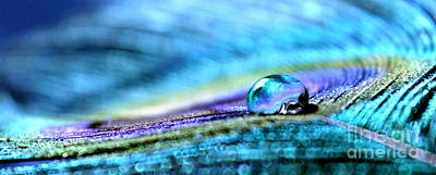Photograph - Treasure In A Drop by Krissy Katsimbras