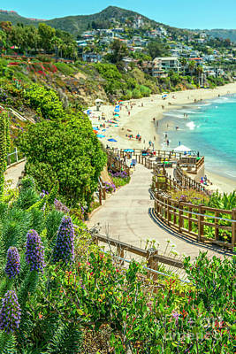 Photograph - Treasure Island Walkway Laguna  by David Zanzinger